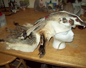 Badger headdress with skull Made to order