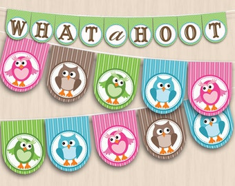 OWL Party Banner in Pink and Teal- Instant Printable Download
