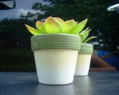 Rustic Wedding Favors, 165 Miniature Planters with Artificial Succulents Being Discontinued, Price Includes Shipping