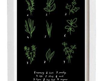 """Kitchen Art Print Herbs 8.3"""" x 11.7"""" - Botanical Chart  - archival fine art giclée print"""