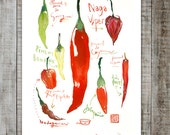 Red hot chili pepper decor, Watercolor art, Kitchen decor, Vegetable painting, 8X10 print, Food poster, Wall art print, Kitchen wall art