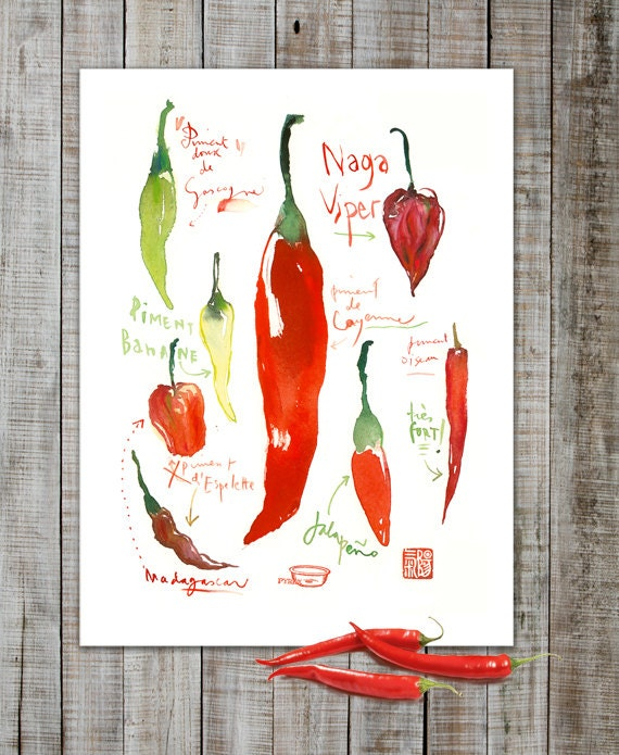 red hot chili pepper poster watercolor art red kitchen. Black Bedroom Furniture Sets. Home Design Ideas