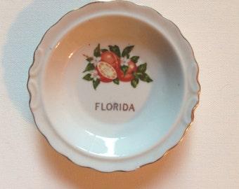 Vintage Florida Souvenir Plate