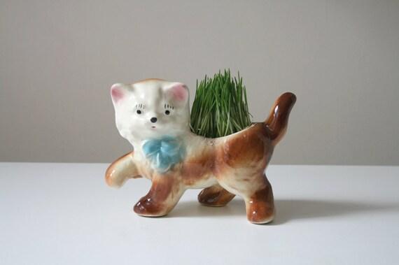 SALE Kitten Planter