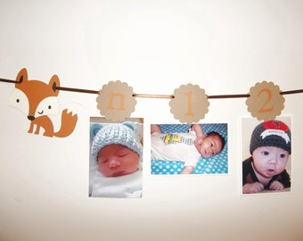 Picture Banner, 1st Year photo banner, Babys first year birthday banner,  FOX, woodland themed party