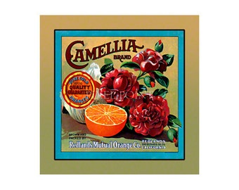 Small Journal - Camellia Brand Oranges  - Fruit Crate Art Print Cover