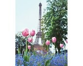 Eiffel Tower with Pink Tulips and Forget-Me-Nots - Paris Spring Photography - dreamy home decor, floral 8x12 Original Fine Art Photograph