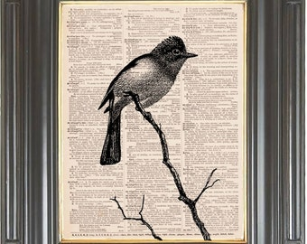 Black white bird wall art print COUPON SALE Dictionary art print Wall art Sheet music print Digital art print Home decor Item No. 244
