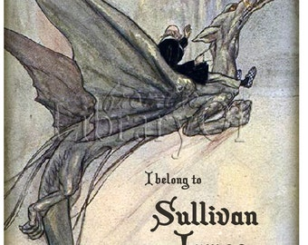 Dragon Rider - Personalized ADHESIVE Bookplate - Great Gift