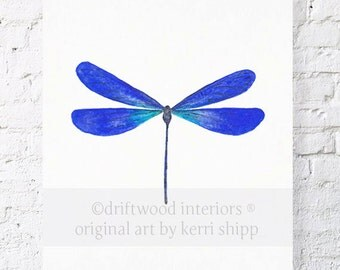 Dragonfly in Cobalt 11x14 Watercolor Print - Cabinet of Curiosities Dragonfly Wall Art