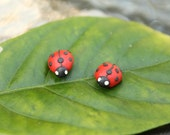 Miniature Animal Earrings... Ladybugs