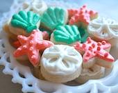 3 Dozen Beach Themed cookie nibbles