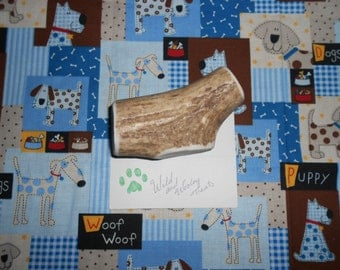 Medium Elk Antler Dog Chew (Lot 345)