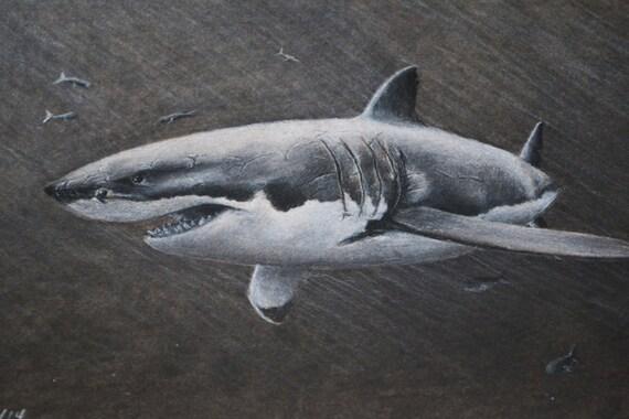 Articles similaires 8 x 10 dessin au fusain grand requin blanc avec impression de poisson de l - Dessin de grand requin blanc ...