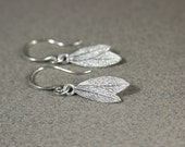 Small Silver Sage Leaf Dangle Earrings