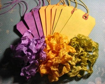 Art/Gift Tag and Ribbon Set -Lime, Yellow and Purple