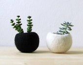 Succulent planter / Best friends forever planter / air plant holder / cactus pot / plant vase / modern decor / set of 2