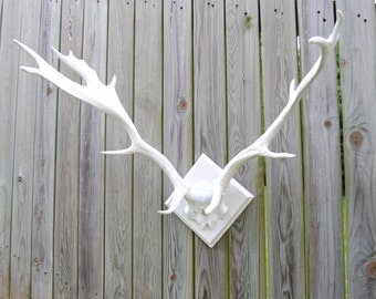 Large Faux Deer Antlers - White - Antler Rack Wall Mount LA01