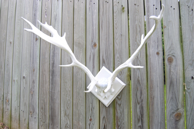 Large faux deer antlers white antler rack wall mount la01 zoom amipublicfo Images