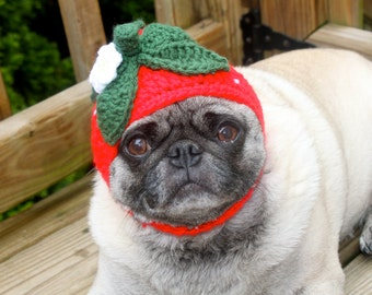 Strawberry Fields Forever - Dog Hat / Made To Order
