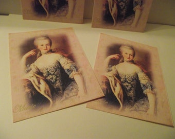 Note Cards  Marie Antionette Distress Background  Vintage Style Elegant Card