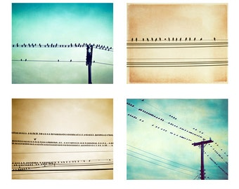 Bird on Wire Photo Set - Four 11x14, 8x10, 5x7 Photographs - teal beige turquoise aqua blue brown nursery art prints baby boy girl photos