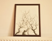 Forest - Original tree drawing - charcoal on paper & wooden vintage frame