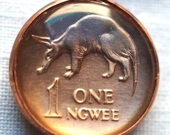 Aardvark Coin Pendant