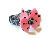Leopard Cheetah Dog Collar size Extra Small