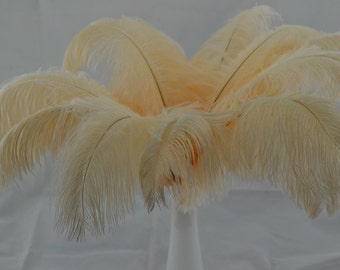 Wholesale 100 beige ostrich feathers for Wedding Table centerpieces Party Decorations eiffel tower centerpiece