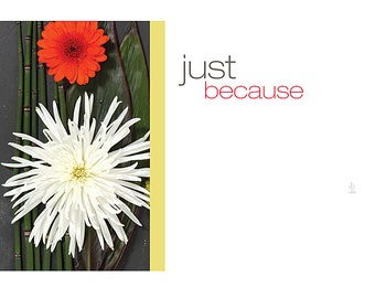 "50 ""Just Because"" Flowers Print Florist Blank Enclosure Cards Small Tags Crafts (Free Shipping!)"