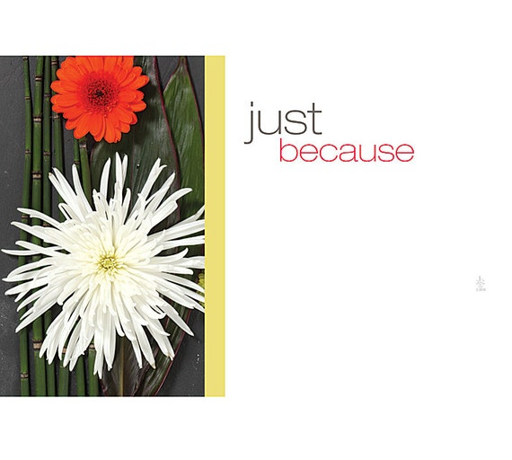 Just because flowers print florist blank