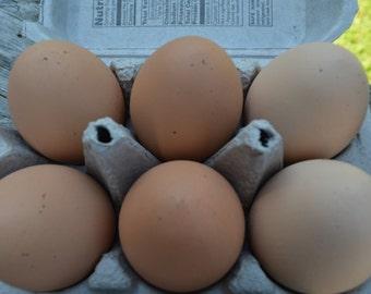 Pretend Eggs Organic Free Range Brown Speckled Play Food Breakfast