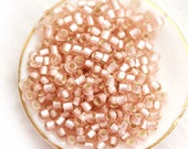 TOHO seed beads, size 11/0, Silver Lined Frosted Rosaline, N 31F, pink seed beads, rocailles - 10g - S044