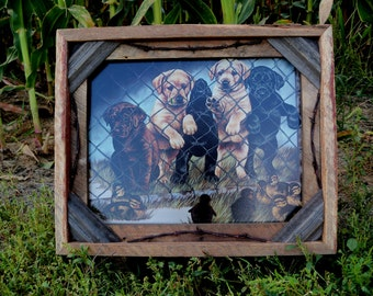Barnwood Frame with puppies looking through wire at ducks