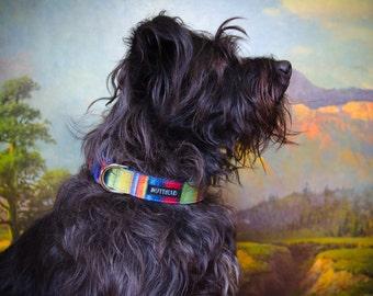 Buckle Dog Collar, Pronto, bright stripes