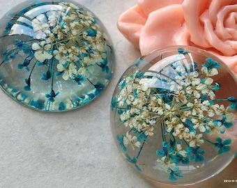 25 mm Round Shape Blue Dried Flowers Flat Back Resin Cabochons (u.m)(new t.m)