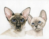 Siamese cat painting kittens 5x8 original watercolor painting pets pet portraits wall art earthspalette