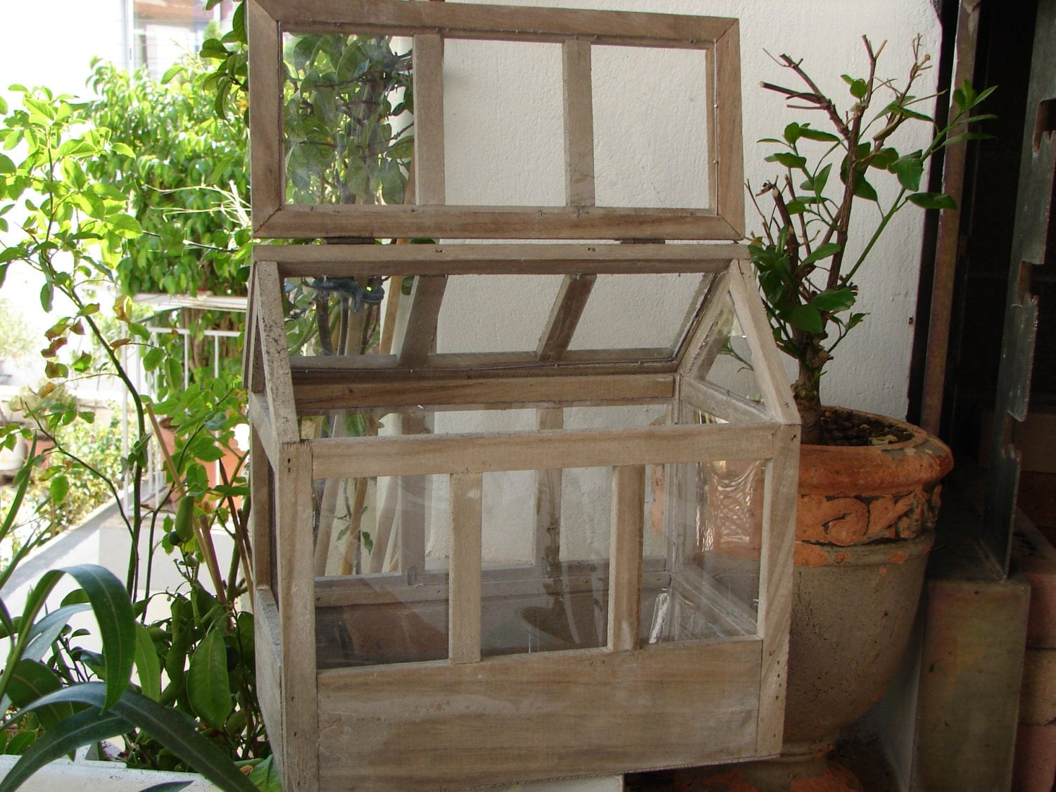 small indoor greenhouse mini indoor greenhouse with seedling