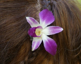 Real Preserved Purple Single Orchid hair pin clip piece