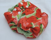 Watermelons Small Cloth Diaper