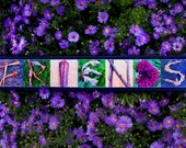WORDS Inspired by Nature:  FRIENDS in purple, pink, and green (photography, handmade gift, inspirational art, home decor)