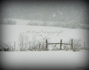 Snow Landscape / Winter Snow Scene / Snow scene picture / Tennessee Landscape / Black and White / Free US Shipping / MVMayoPhotography