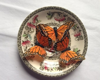 Orange monarch glen feather butterfly hair clip bobby pin set