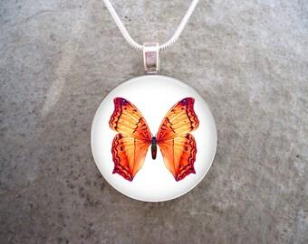 Orange Butterfly Jewelry - Photo Pendant - Butterfly 4