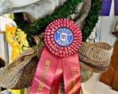 Stuart's vintage horse show ribbon