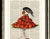 The Strawberry Thief Upcycled print on a vintage book page from a late 1800s Dictionary Buy 3 get 1 FREE