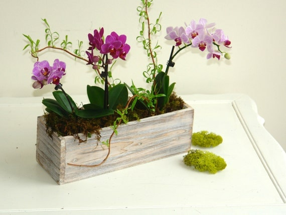 wood boxes woodland planter flower box rustic pot vases for wedding wooden boxes rustic chic wedding garden party