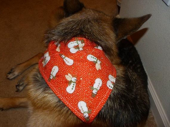 Dog Bandana Sewing INS...