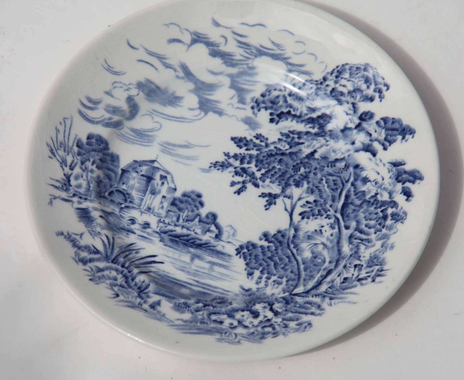 Wedgewood in the countryside blue and white decorative for Wedgewood designs